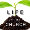 Life in the Church